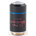 Motic objetivo EC PL P, CCIS, plan, achro, (spannungsfrei) 60x/0.80, S, w.d. 0.35mm (BA-310 POL)