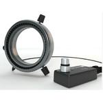 StarLight Opto-Electronics RL5-80 UV365, UV (365 nm), Ø 80mm