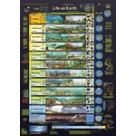 Planet Poster Editions Póster Life on Earth