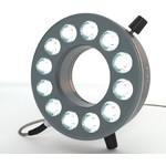 StarLight Opto-Electronics RL12-10s-24V NW, Spot,  natur-weiß (4.000 K), M12-Stecker (4-polig)