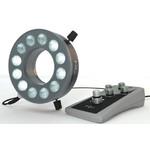 StarLight Opto-Electronics RL12-18s-S4 A,  segment., amber (590 nm)
