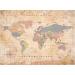 Miss Wood Weltkarte Woody Map Watercolor Old School L