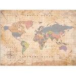Miss Wood Mappa del Mondo Woody Map Watercolor Old School XL