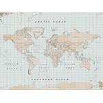 Miss Wood Mappa del Mondo Woody Map Watercolor Vintage XL