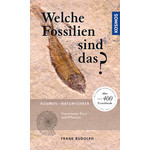 Kosmos Verlag Welche Fossilien sind das?