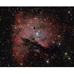 NGC 281, 200/1200 Newton, Heidelberg, Julian Zoller