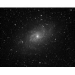 Galassia del Triangolo (M33), Pleiadi, Foto: Norbert Seebacher