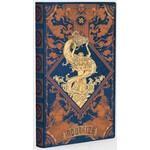 AstroReality Notizbuch Zodiac Notebook - Aquarius
