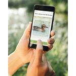 Die App identifiziert den Vogel Ihrer Aufnahme