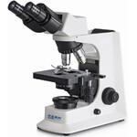 Kern Microscopio Bino Achromat 4/10/40/100, WF10x18, 20W Hal, OBF 121