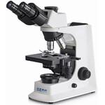 Kern Microscopio Trino Plan 4/10/40/100, WF10x18, 20W Hal, OBF 132