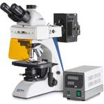 Microscopio Trino Inf Plan 4/10/20/40/100, WF10x20, 100W HBO FL (B/G), OBN 147
