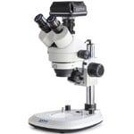 Kern Microscopio OZL 464C832, Greenough, Säule, 7-45x, 10x/20, Auf-Durchlicht, 3W LED, Kamera 5MP, USB 3.0