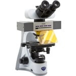 Optika Microscopio B-510LD4, LED fluorescense, trino, 1000x, Plan IOS, 4 empty filtersets slots