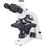 Motic Microscoop BA210E trino, infinity, EC- plan, achro, 40x-1000x, Hal,