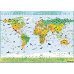 Columbus Kinderkarte Terra (100x70)