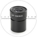 Novex Ocular de campo grande 50.811, WF 10x, con micrómetro