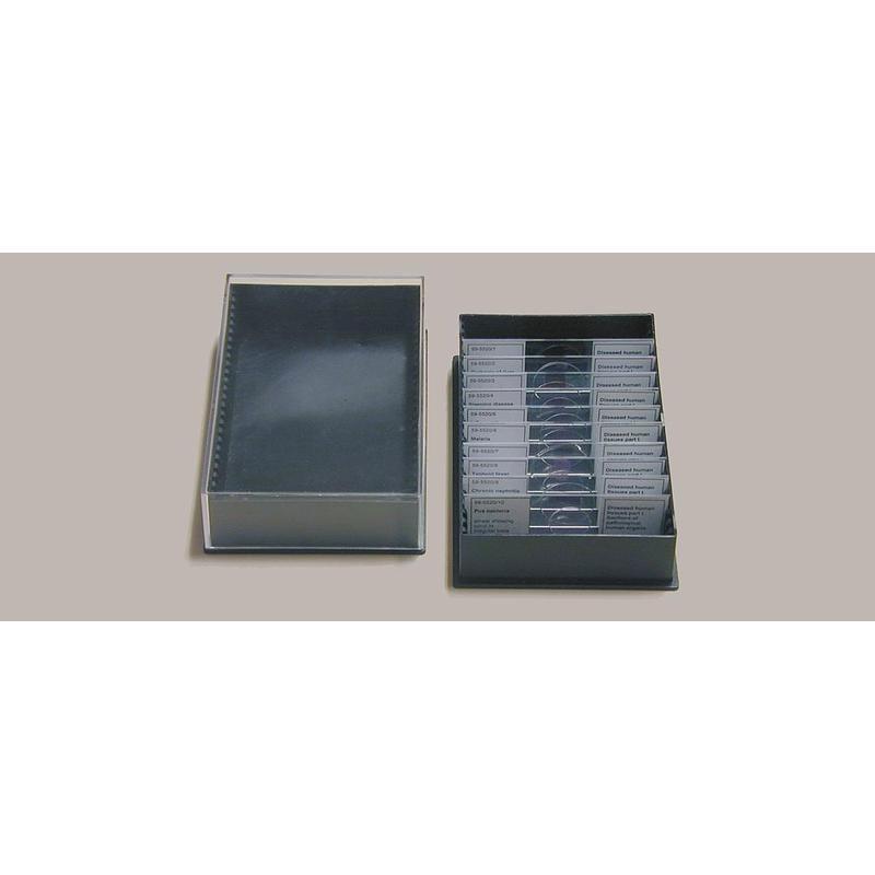 windaus coffret de rangement en plastique pour 25. Black Bedroom Furniture Sets. Home Design Ideas