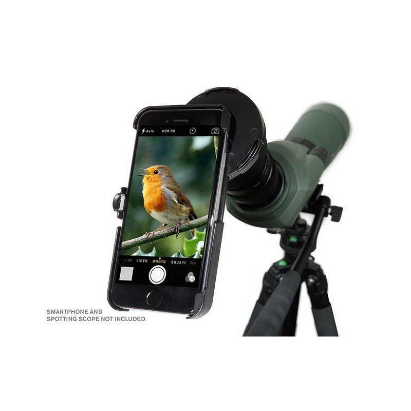 celestron smartphone adapter regal f r iphone 6. Black Bedroom Furniture Sets. Home Design Ideas
